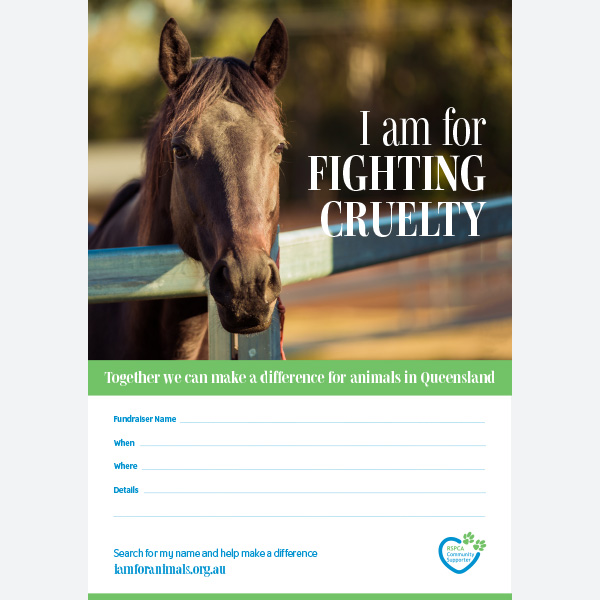Fundraising Poster - Horse